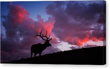 Sunset In The Rockies Canvas Print
