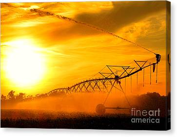 Sunset Irrigation Canvas Print by Olivier Le Queinec