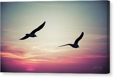 Sunset Canvas Print by Joseph Westrupp