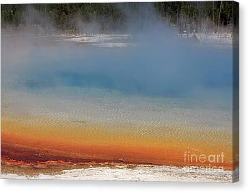 Sunset Lake In Black Sand Basin Yellowstone National Park Canvas Print by Louise Heusinkveld