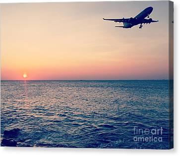 Sunset Landing Canvas Print by Jennifer Ansier