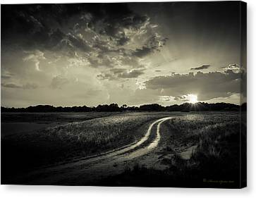 Sunset Lane-bw Canvas Print by Marvin Spates