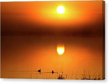 Sunset Marshes Canvas Print