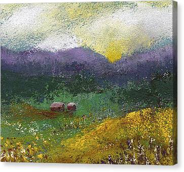 Sunset Meadow Canvas Print by David Patterson