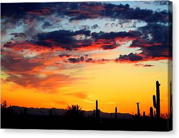Sunset Meets Silhouttes Canvas Print
