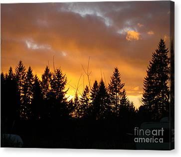 Sunset My Front Yard Canvas Print by Mary Jo Zorad