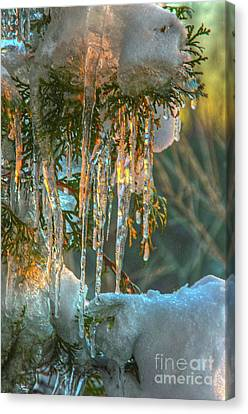 Sunset On Ice Canvas Print by Robert Pearson