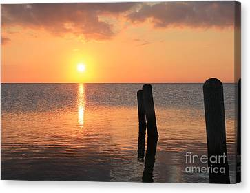 Canvas Print featuring the photograph Sunset On Pimlico Sound by Laurinda Bowling