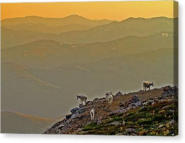 Canvas Print featuring the photograph Sunset On The Edge by Scott Mahon