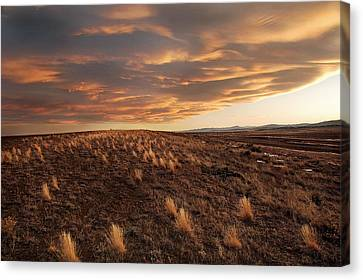 Sunset On The Ridge Canvas Print by James Steele
