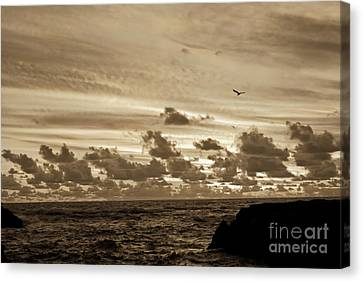 Canvas Print featuring the photograph Sunset On The Tasman Sea by Yurix Sardinelly