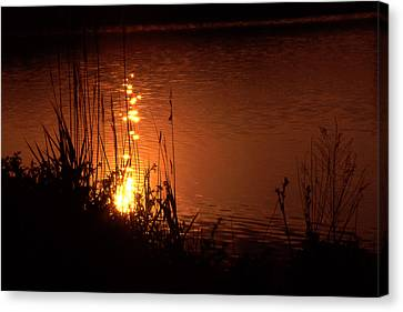 Sunset On The Water Canvas Print by Barry Shaffer