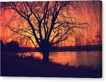 Sunset On Willow Pond Canvas Print by Kathy M Krause