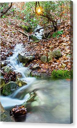 Canvas Print featuring the photograph Sunset Over An Oak Mountain Stream by Parker Cunningham