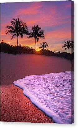 Sunset Over Coral Cove Park In Jupiter, Florida Canvas Print by Justin Kelefas
