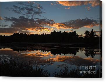 Sunset Over Cranberry Bogs Canvas Print