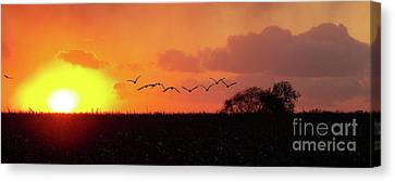 Sunset Over Easy Canvas Print by Sue Stefanowicz
