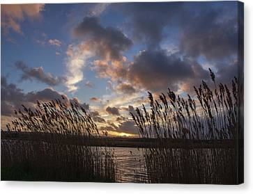 Sunset Over The Exe Canvas Print
