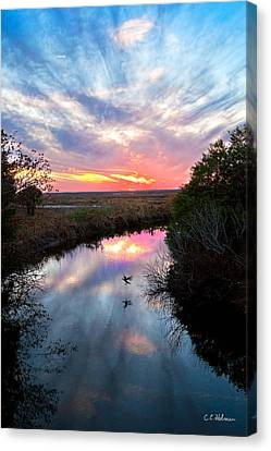 Sunset Over The Marsh Canvas Print by Christopher Holmes