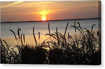 Sunset Over The Sound  Canvas Print by Joyce Wasser