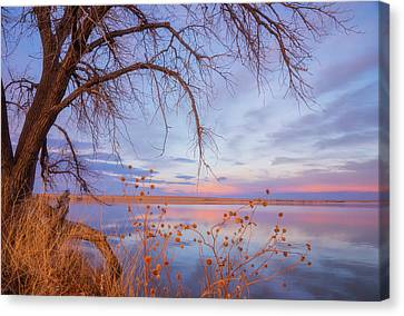 Canvas Print featuring the photograph Sunset Overhang by Darren White