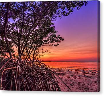 Sunset Palette Canvas Print