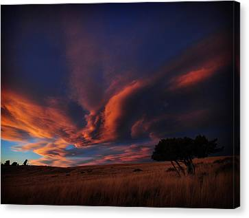 Sunset Plains Canvas Print