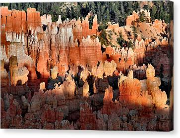 Sunset Point Hoodoos Canvas Print by Stephen  Vecchiotti