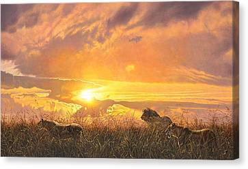 Sunset Prowl Canvas Print