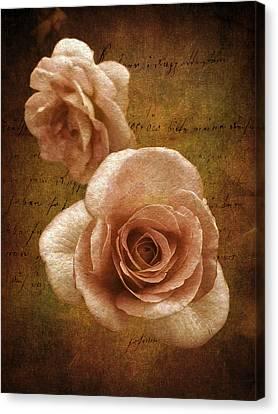 Sunset Rose Canvas Print by Jessica Jenney