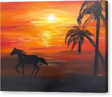 Sunset Run Canvas Print by Aleta Parks