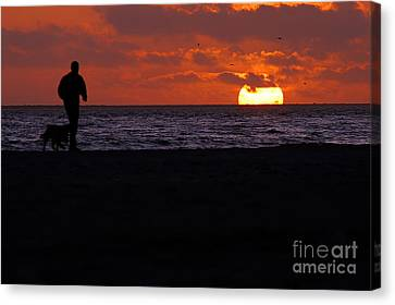Sunset Run Canvas Print by Clayton Bruster