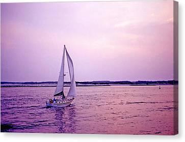 Sunset Sailing Canvas Print by Bill Jonscher