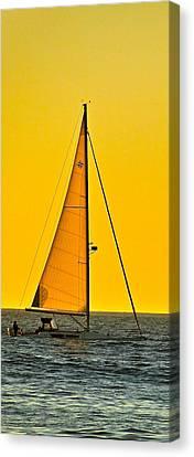 Sunset Sailing Canvas Print by Liz Vernand