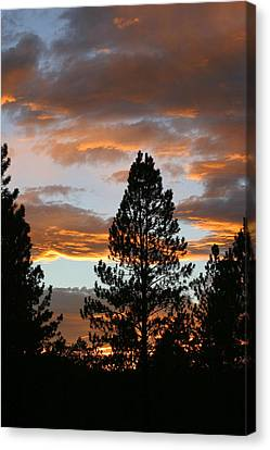 Sunset Silhouette Canvas Print by Donald Tusa