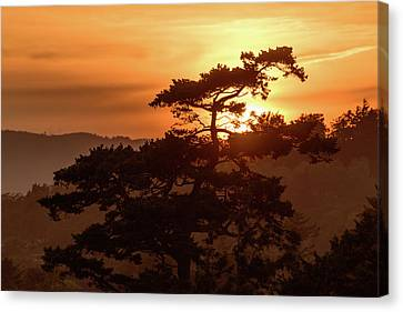 Sunset Silhouette Canvas Print by Keith Boone