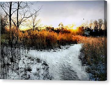 Sunset Snow Steps Canvas Print by Diana Angstadt