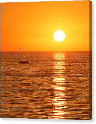 Sunset Solitude Canvas Print by Ed Clark