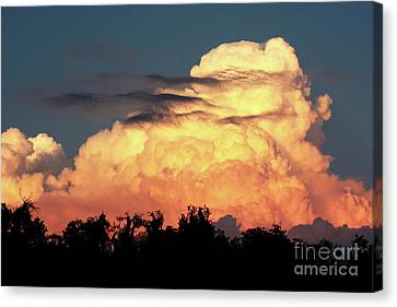 Sunset Storm Clouds Over The Marsh Canvas Print by Carol Groenen