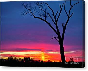 Sunset Sundog  Canvas Print