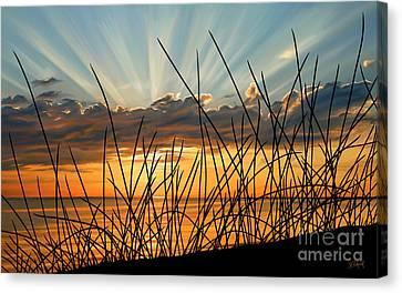 Sunset Thru The Grass Canvas Print by Sue  Brehant