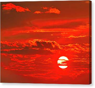 Sunset Canvas Print by Tony Beck