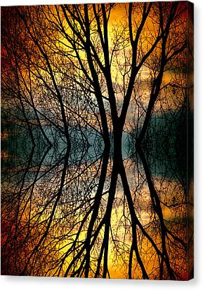 Sunset Tree Silhouette Abstract 3 Canvas Print by James BO  Insogna