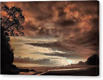 sunset Trip Canvas Print by Mario Bennet