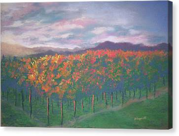 Sunset Vineyard Canvas Print by Becky Chappell