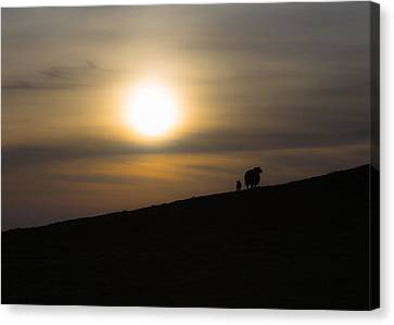 Sunset Watchers Canvas Print by Chris Fletcher