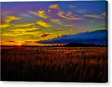 Canvas Print featuring the photograph Sunset Wheat by Gary Smith
