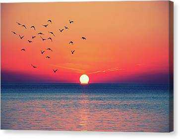Sunset Wishes Canvas Print