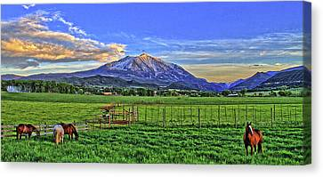 Sunset With Horses Canvas Print by Scott Mahon