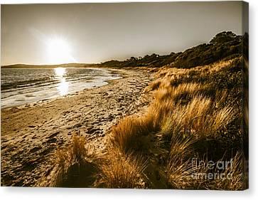Sunsets And Tasmanian Seas Canvas Print